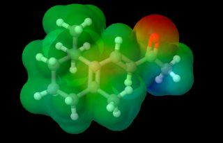 molecole del gusto